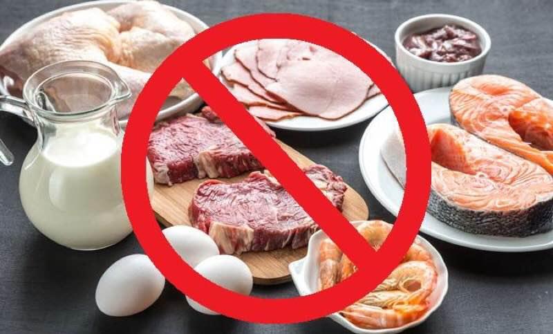 動物性タンパク質を含んだ食品