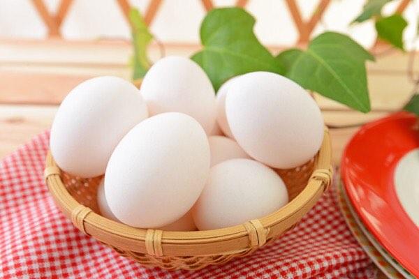 ファスティングの準備食・回復食で「卵」は食べても良い?